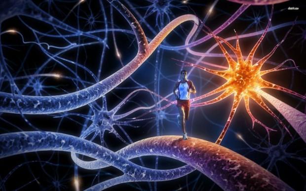 ser un neurolíder